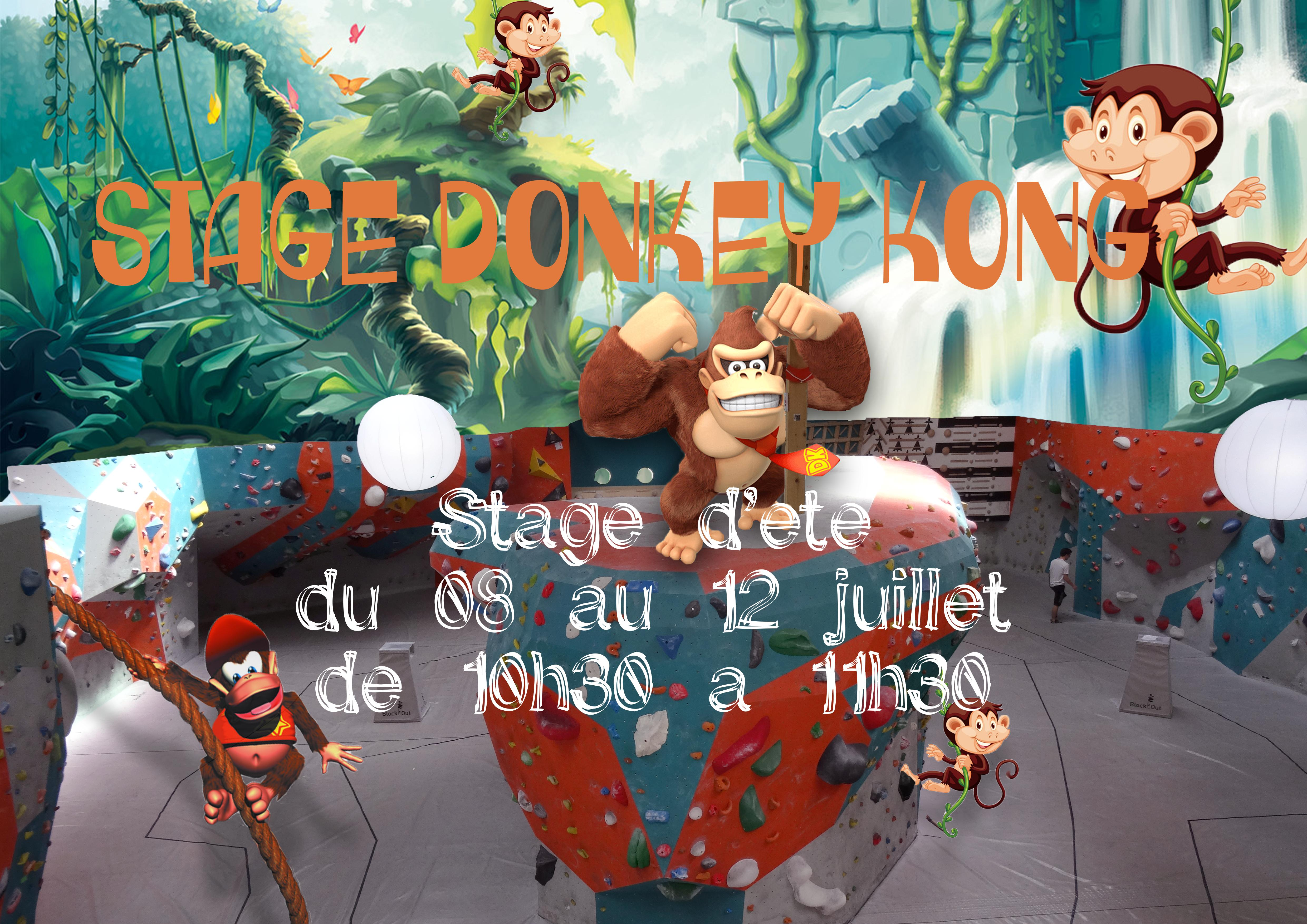 Stage Donkey Kong - Block'Out Rennes